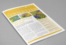 Newsletter Indesign Template